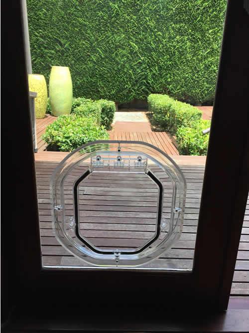 Medium Dog Door For Glass Supplied Installed Adelaide Pet Doors