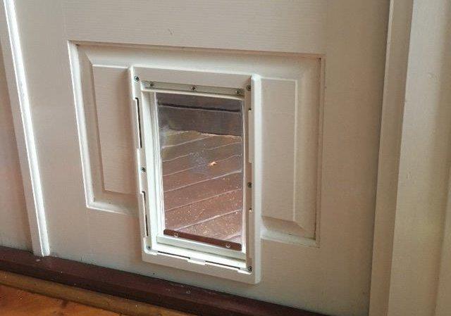 Medium Dog Door For Timber Supplied Installed Adelaide Pet Doors