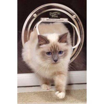 Cat Doors for Glass